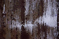 Фотофон виниловый стена
