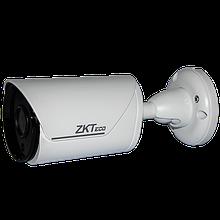IP камера BS-52O12K/13K