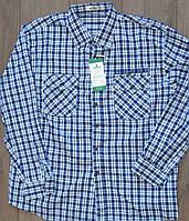 072e9c06997 Мужская классическая рубашка 100% хлопок с двумя карманами (размеры  XL