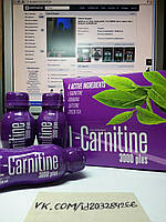 Карнитин, FA L-Carnitine 3000 Plus Shot Box 12x100ml