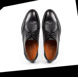 Мужские чёрные кожаные туфли (броги, оксфорды) ікос/ikos