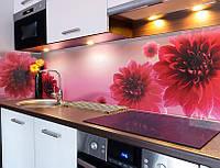 Скинали для кухни с цветами - Георгины