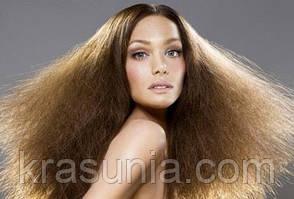 Сухие волосы: особенности и правила ухода
