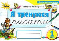 Я тренуюся писати 1 клас (НУШ) Понамарьова К., фото 1