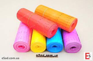 Етикетки TYVEK кольорові 1,27*22см, 1000шт, фото 3