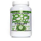 SN 100% Plant Protein 900 г - chocolate praline