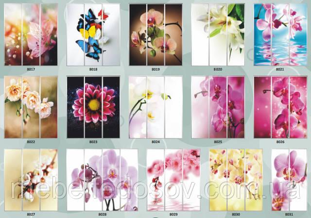 фотопечать для шкафа-купе цветы макси мебель