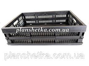 Ящик пластиковий складаний 480х350х126 колір темний, фото 2