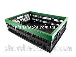 Ящик пластиковый складной 480х350х126 Цветной