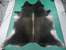 Унікальна рідкісна забарвлення шкіри буйвола на підлогу в Києві
