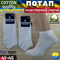 """Носки мужские из дорогого хлопка белые """"ПОТАП"""" Украина 41-45. НМД-05749"""