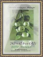 Фоторамка пластиковая, рамка формата 29,7х42 (А3)