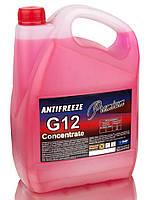 Антифриз G12 концентрат красный TM Premium 5 кг