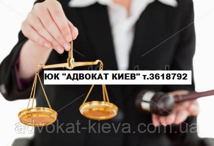 Семейный адвокат о самых распространенных причинах разводов в молодых семьях.