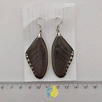 Серьги из крыла бабочки Papilio polytes