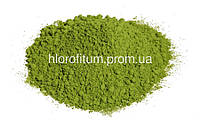 Маття Японский зеленый чай 50 грамм (Матча, маччя) BIO Matcha