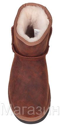 Мужские угги UGG Classic Mini Leather Chestnot (мини угги австралия) с пропиткой рыжие, фото 2