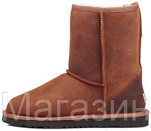 Мужские угги UGG Classic Short Leather Chestnut (Угги Австралия) рыжие, фото 2