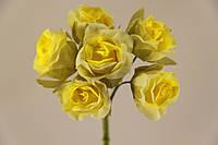 5634-1-13  желтая, фото 1