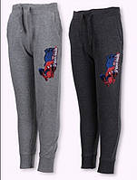 Спортивные брюки на мальчиков оптом, Disney, 98-128 рр