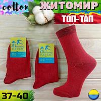 """Женские носки демисезонные  ТМ """"Топ-тап"""" Житомир Украина   NJD-02580"""