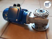 Мотор-редуктор (мішалка) Frigomilk для охолоджувача молока новий Frigomilk, FIC