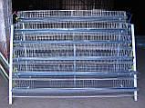 Клетки для перепелов на 636шт. 6этажные., фото 4