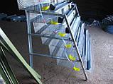 Клетки для перепелов на 636шт. 6этажные., фото 5