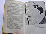 В. Халифман Джмелі і терміти, фото 3