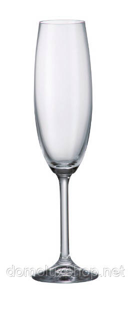 Bohemia Gastro collection Набор бокалов для шампанского 6*220 мл (4S032 00000)