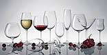 Bohemia Gastro collection Набор бокалов для шампанского 6*220 мл (4S032 00000), фото 2