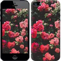 """Чехол на iPhone 5s Куст с розами """"2729c-21-11157"""""""