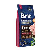 Сухой корм Brit Premium Junior L для щенков и молодых собак крупных пород со вкусом курицы 15 кг
