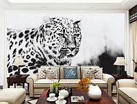 """3D фотообои """"Леопард"""""""