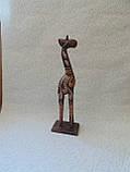 Статуэтка деревянная Жираф высота 30 см, фото 6