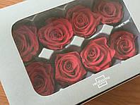Роза стабилизированная бутон красный 5,5см, фото 2