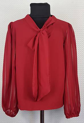 Блузка с длинным рукавом Бант  р.128-152 бордовый, фото 2