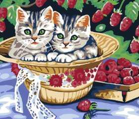 """""""Котята в саду"""" раскраска по номерам арт.БЛ.013-CE Белоснежка, фото 1"""