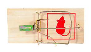Мышеловка малая (10 см х 4,5 см) ― безопасное средство для борьбы с грызунами , фото 2