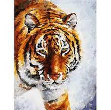 Картина за номерами Білосніжка «Тигр на снігу»