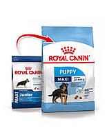 Royal Canin Maxi Junior Puppy 15 кг - для щенков крупных размеров в возрасте до 15 месяцев, фото 1