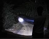 Длинный фонарик, фото 2
