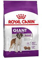 Сухой корм (Роял Канин) Royal Canin Giant Adult 15 кг для собак очень крупных размеров