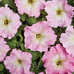Семена петуния Аленка F1, многоцветковая низкорослая (мультифлора) розовая с желтым центром 1 000 сем. (драже)