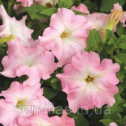Семена петуния Мистрал F1, 1000 сем. (драже), нежно-розовая крупноцветковая низкорослая (грандифлора)