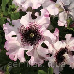 Семена петуния Альба F1, крупноцветковая низкорослая бахромчатая белая 1 000 сем. (драже)