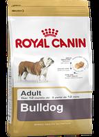 Сухой корм (Роял Канин) Royal Canin Bulldog Adult 3 кг для собак породы английский бульдог в возрасте старше 12 месяцев