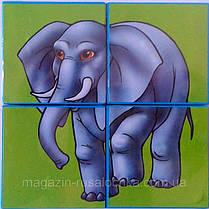 Кубики с рисунком