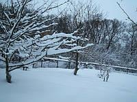 Зимние работы декабрь, январь, февраль.