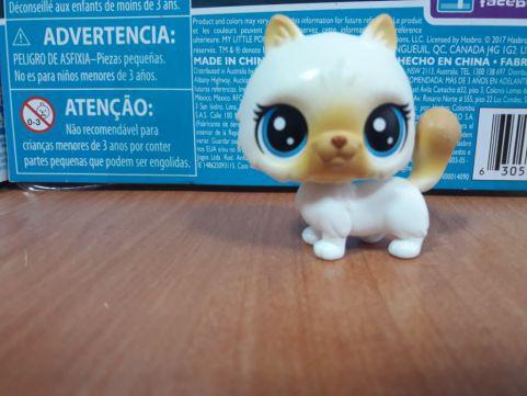 Littlest pet shop lps игрушка Hasbro лпс пет шоп кошечка himalia cattrick 1-104